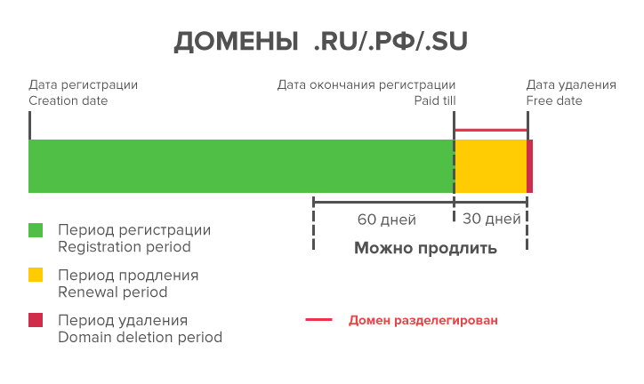 Жизненный цикл доменов .ru и .рф